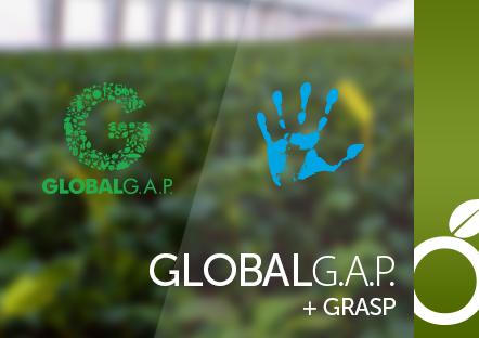 GlobalG.A.P dla Fructoplant Sp. z.o.o
